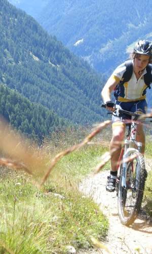 80 Mountainbikes for free rental in the Quellenhof Resort in South Tyrol